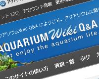 aqwiki_aq
