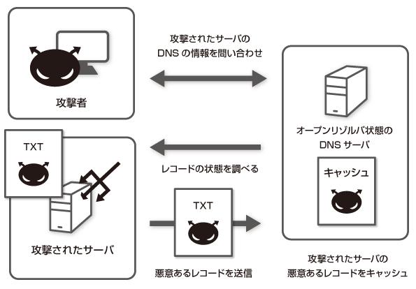 dnsamp02