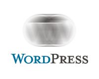 手間をかけずにWordPressのスパムを1/25に減らす対策